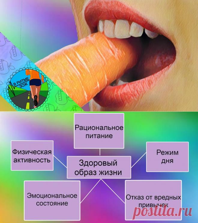 """""""Что такое ЗОЖ и с чем его едят"""": 5 принципов здорового образа жизни"""