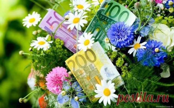 Цветы и деньги. - Познавательный сайт ,,1000 мелочей