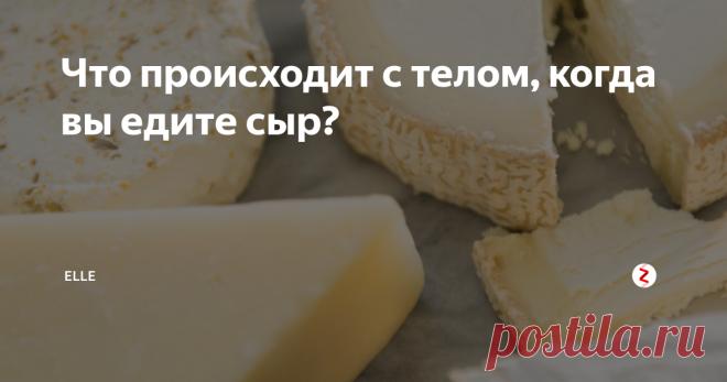 Что происходит с телом, когда вы едите сыр?