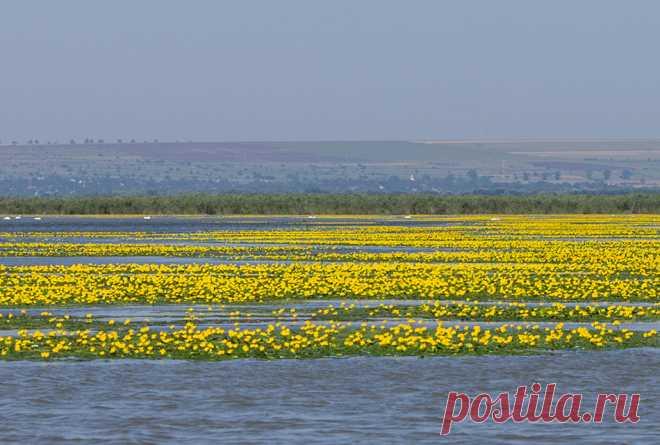 Маршрут на выходные: необычные озера и водохранилища Молдовы - Locals