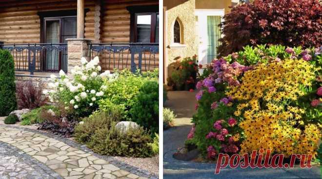 Оформляем вход в дом многолетними цветами и кустарниками : 45 идей   Идеи для Дома