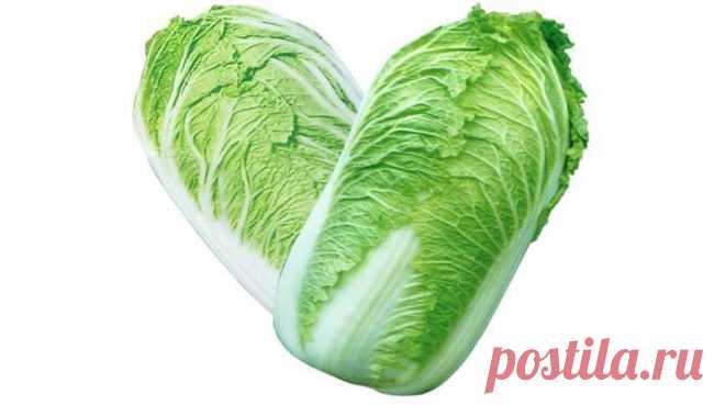 ТОП-6 Салатов с Пекинской Капустой - Полезно Знать Самые вкусные рецепты салатов с пекинской капустой 1. Салат «Быстро и вкусно»! Ингредиенты: — капуста — свежий огурец — лучок — колбаска (кому какая нравится) — майонез — специи Приготовление: 1. Капусту шинкуем (у нас пекинская, с ней вкуснее) 2. Огурец режем соломкой (я люблю чтоб соломка была по-крупней) 3. Колбасу режем соломкой 4. Лук …