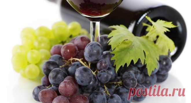 Как приготовить домашнее вино из винограда: бесценный рецепт   Красное вино. Снимок иллюстративный. | ФОТО: Scanpix   Стоит хоть раз в жизни попытаться приготовить домашнее вино, чтобы понять ценность этого виноградного напитка. Если вы думаете, что это слишком…