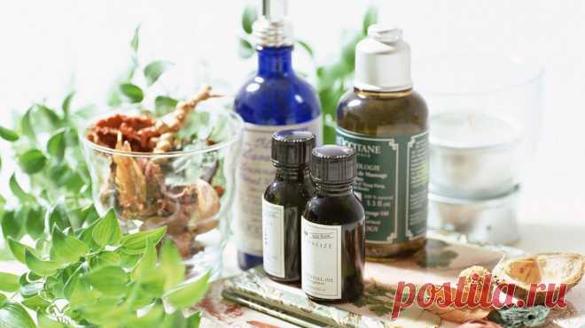 TINCTURES WHICH NEED to be HAD IN the HOME FIRST-AID KIT   Always in shape!