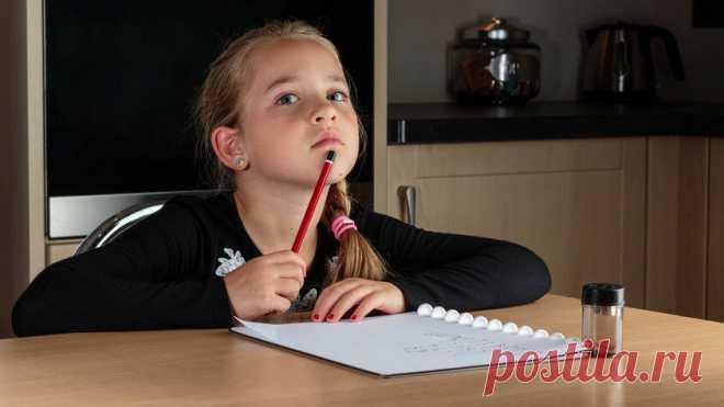 Почему дети не запоминают пройденное на уроках и как это изменить   ActivityEdu   Яндекс Дзен