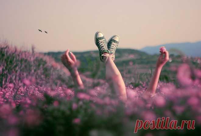 Персональная концепция счастья: уберите из жизни всего семь «О»   Golbis