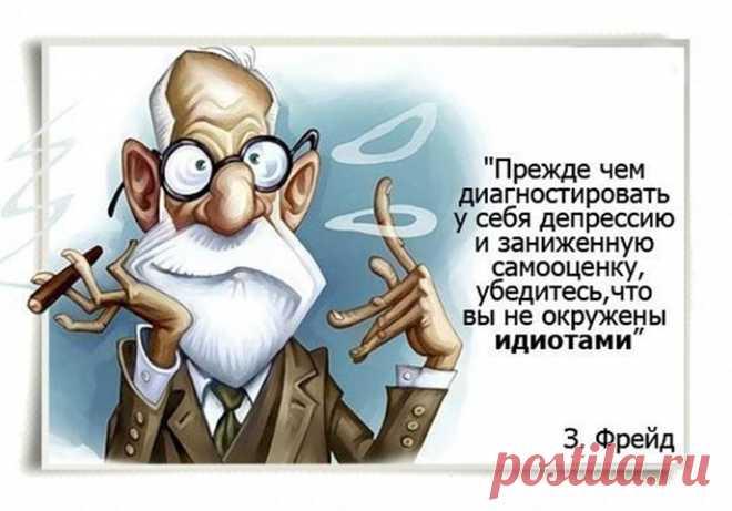Веселые фразы и премудрости...
