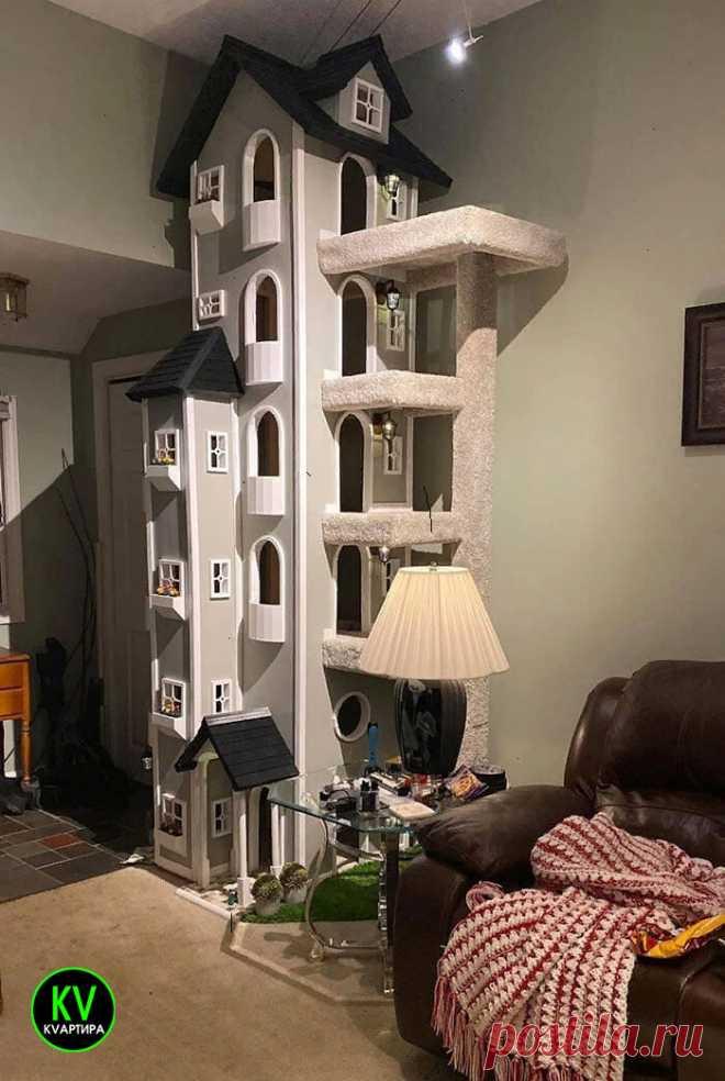 Просто строил домик для любимого кота и