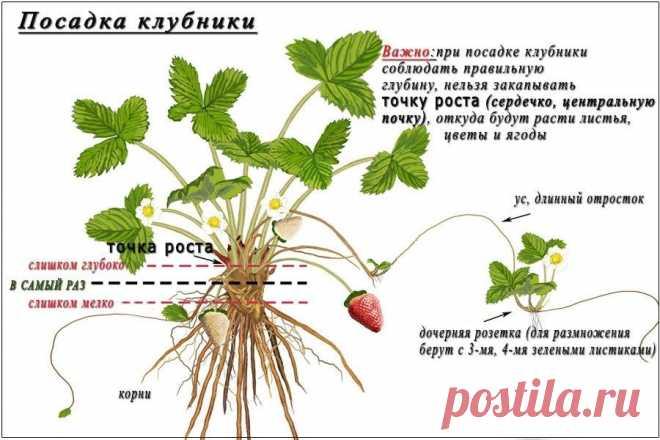 _EpNtJ_V-pg.jpg (900×600)