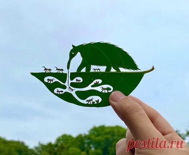 Японский художник создает удивительные штуки из простых листьев