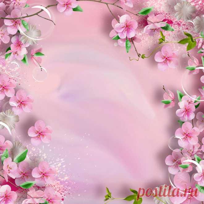 Фон для презентации розовый цвет