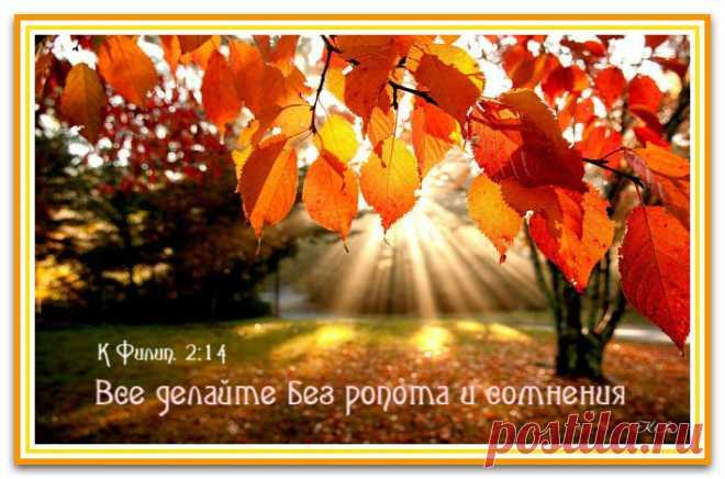 image (708×468)