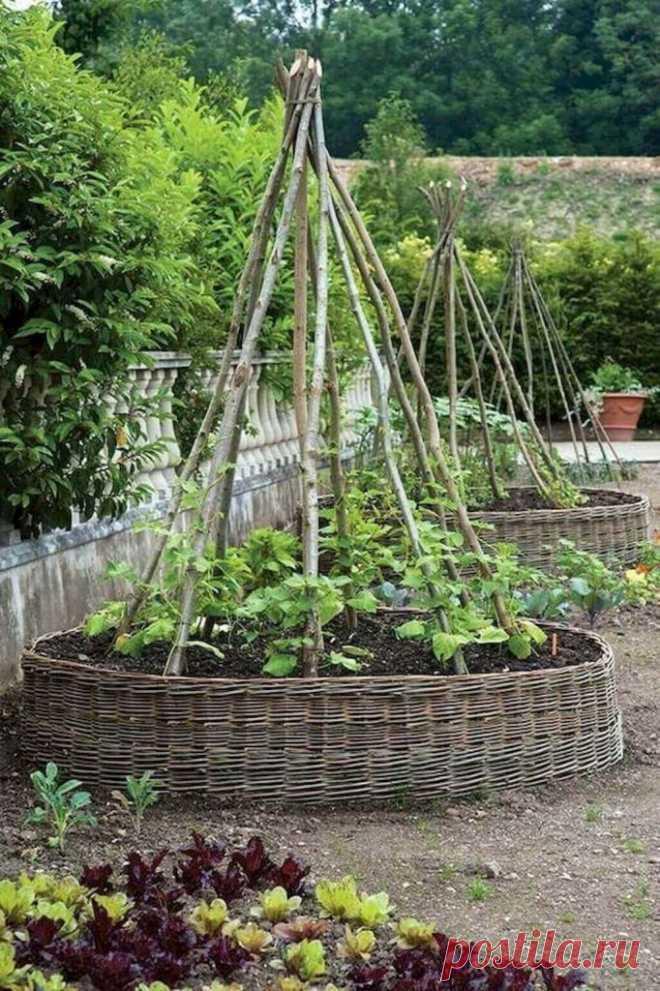 Опоры для огородных растений: фото ~ Planetalsad