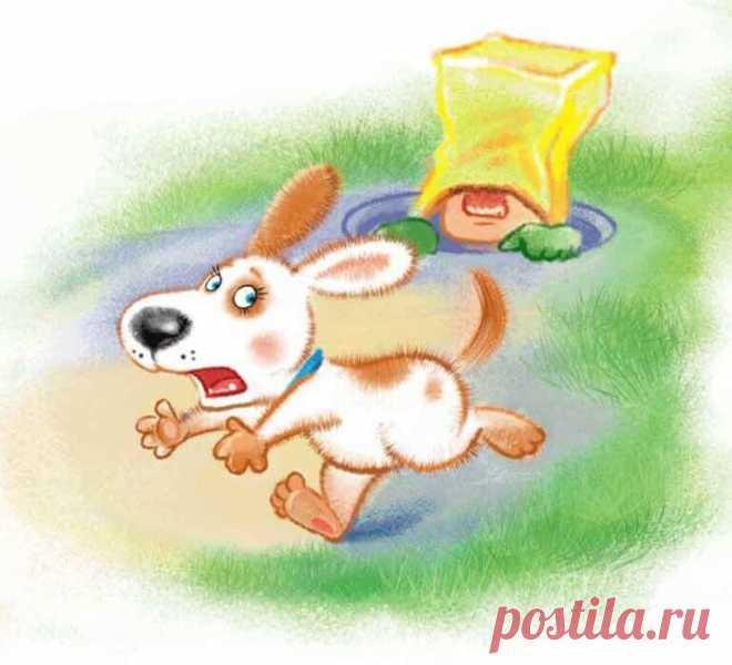 Аудиосказку «Умная собачка Соня» слушать онлайн https://web-skazki.ru/book/umnaya-sobachka-sonya , рекомендую каждому ребенку и родителю, это будет очень полезно и поучительно, так же можете ее тут скачать, как будет удобно!