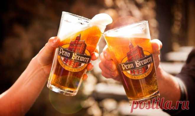 8 важных советов начинающему пивовару.