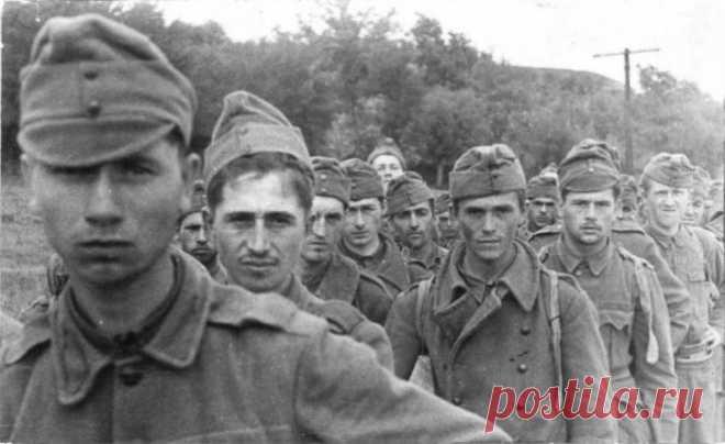 Почему на Воронежском фронте венгров не брали в плен Сражению за Воронеж историки и журналисты до сих пор уделяют гораздо меньше внимания, чем Сталинградской битве. А между тем оборона Воронежа длилась на 12 дней дольше. Главным противником Красной Арми…