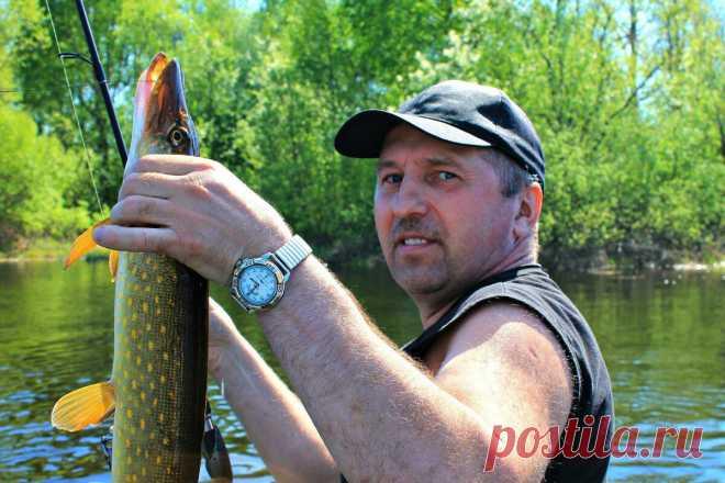 Места отдыха в Ростовской области с возможностью порыбачить