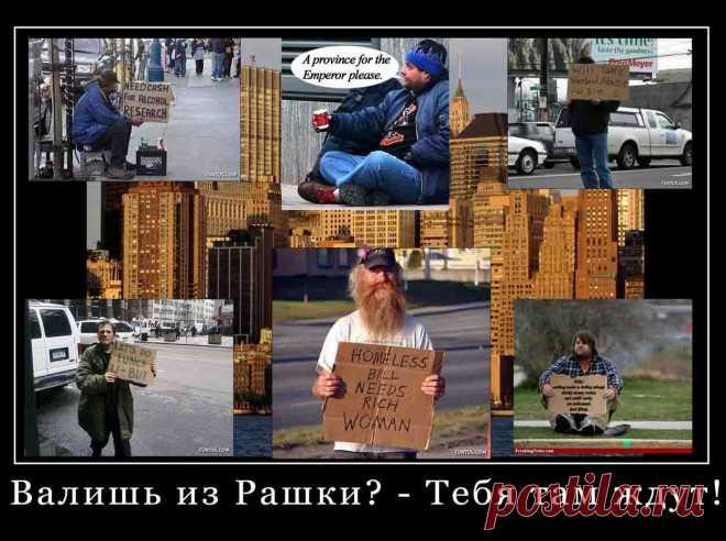 Веские причины остаться в России.   Я так вижу