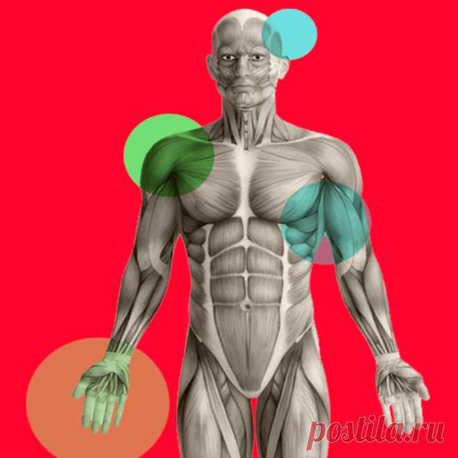 Подсказки организма, которые указывают на дефицит белка Белок необходим организму. Белковую пищу важно употреблять каждый день, чтобы избежать осложнений со здоровьем и преждевременного старения. Многие диеты приводят к тому, что организм начинает испытывать тотальный дефицит этого «строительного материала». Какие симптомы укажут на то, что вам не хватает белка?