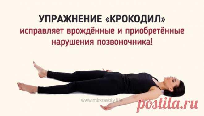 Упражнение «Крокодил» для лечения позвоночника!