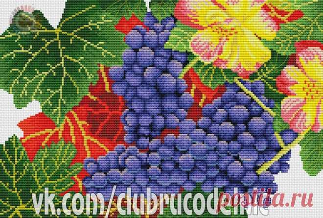 ВЫШИВКА-Виноград