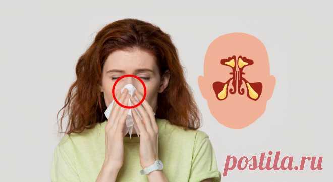 6способов избавиться отзаложенности носа за15минут #здоровье #насморк