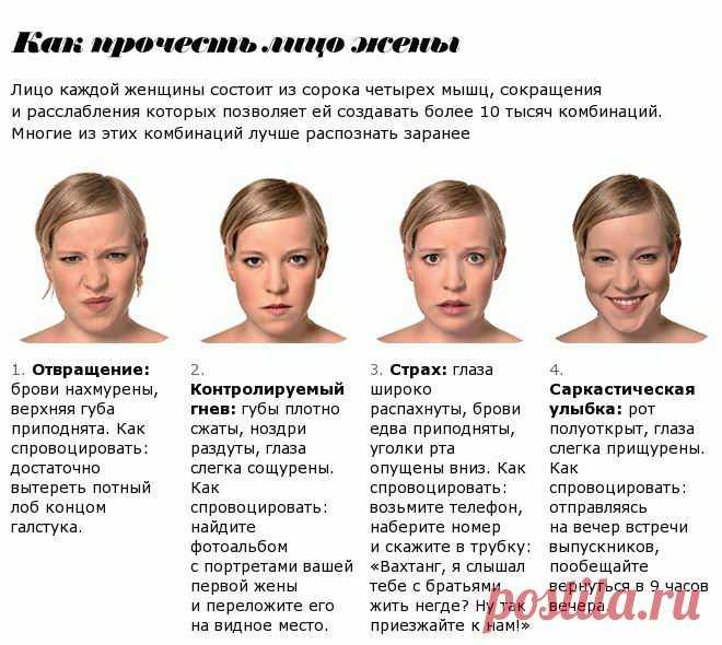Физиогномика лжи в картинках