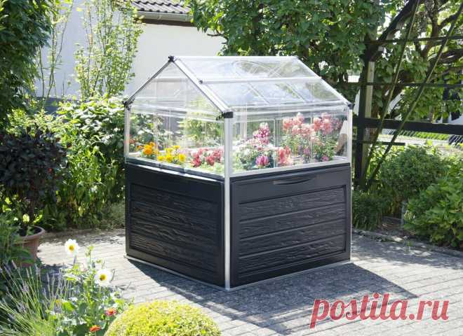 Европейцы изобрели новый вид теплиц. Наши огородники могут сделать такие сами   Маленький сад на краю Вселенной   Яндекс Дзен