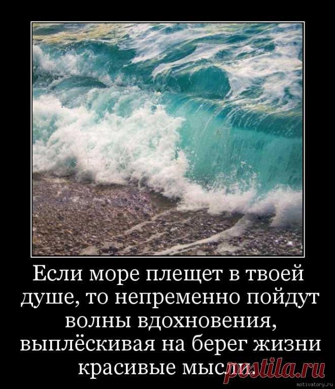 нас собраны море цитата к фото попасть райский остров