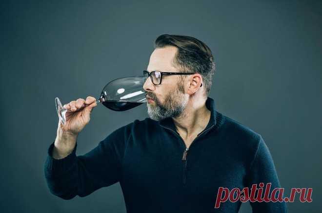 Какое выбрать вино дешевле 500 рублей и не пожалеть о покупке: натуральный вкус без химии | ПИВКО И РЫБКА | Яндекс Дзен