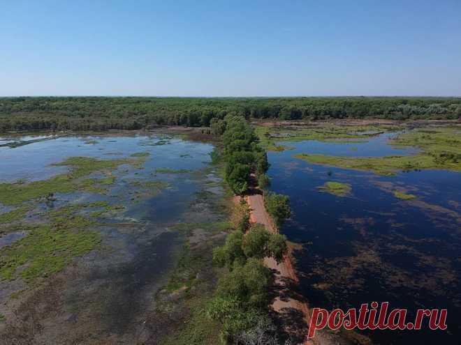 Австралия: небольшая реколонизация Земли         (28 фото) . Чёрт побери