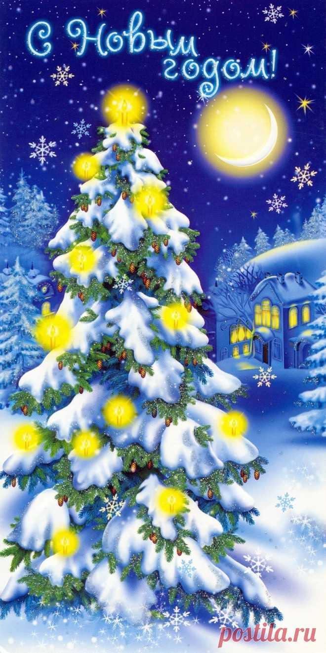 Что, новогодняя елка фотографии и открытки