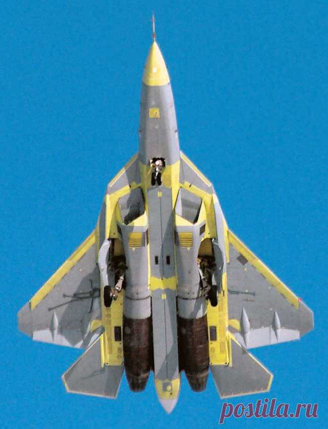 The Ministry of Defence puts an end to T-50