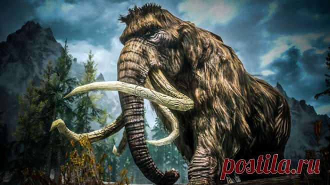 Планета Земля и Человек: Криминальный бизнес на бивнях мамонтов (Видео)