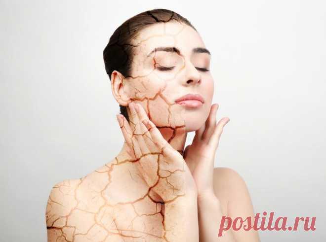 Маски для жирной кожи - домашние рецепты Многие женщины думают, что им совершенно не повезло, если у них жирный тип кожи. В такой ситуации есть свои огромные плюсы. Жирная кожа – это залог того, что морщины появятся гораздо позже, чем у обла...