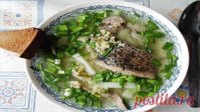 Рыбные блюда из СССР. Готовить можно хоть каждый день | Пенсионерские дела | Яндекс Дзен