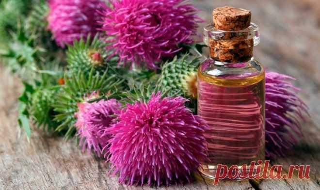Полезные свойства масла расторопши в косметологии