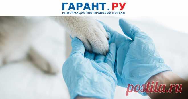 С 1 сентября – новый порядок выписки ветеринарных рецептов В частности, при назначении лекарства владельца животного будут информировать о наличии взаимозаменяемых лекарственных препаратов.