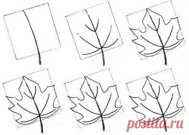 Разные техники рисования кленового листа