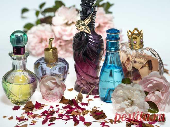 Как понять, что в интернет-магазине продается поддельная парфюмерия: признаки, которые должны насторожить   ПолезНЯШКА   Яндекс Дзен
