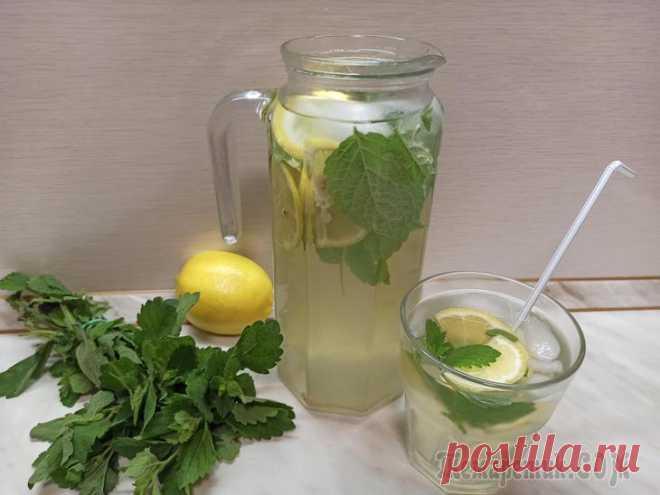 Освежающий домашний лимонад с мятой В жаркую пору года всегда хочется вкусных охлаждающих напитков. Предлагаю один из вариантов такого напитка - домашний лимонад с мятой! Напиток получается очень вкусный и освежающий, в меру сладкий, с ...