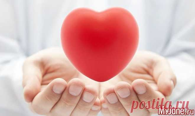 День сердца - Здоровье сердца, инсульт, инфаркт, ишемическая болезнь сердца