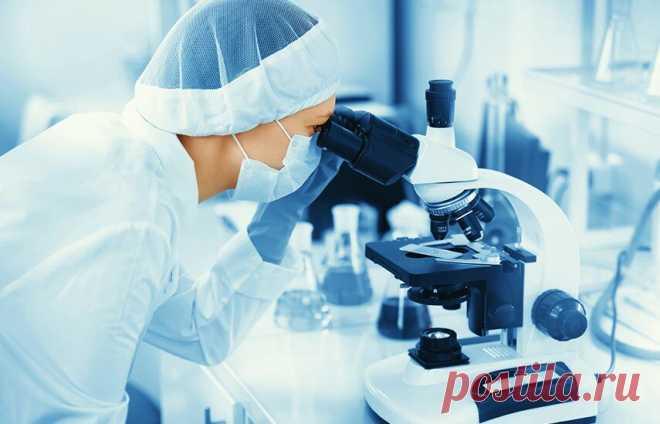 7 золотых правил исцеления организма | Эксперимент | Яндекс Дзен