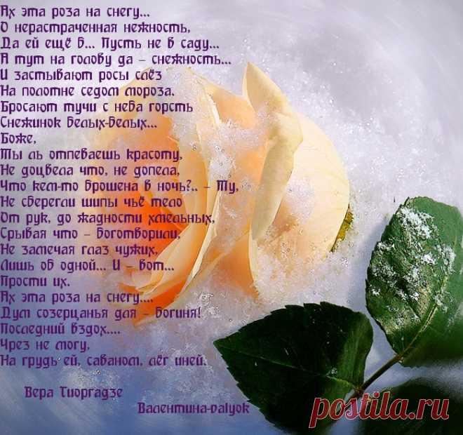 стихи к каждой розе орудие