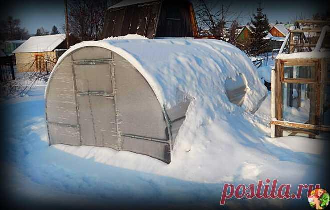 Всю зиму поддерживаю теплую температуру в теплице без энергозатрат. Делюсь своим экономичным и рабочим методом обогрева | Огородница из Тулы I Евгения | Яндекс Дзен
