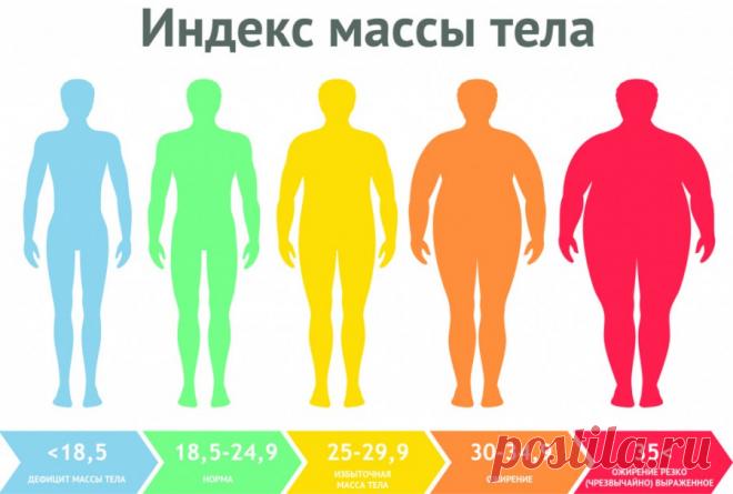 Ожирение – это про принятие или же всё-таки избавление?