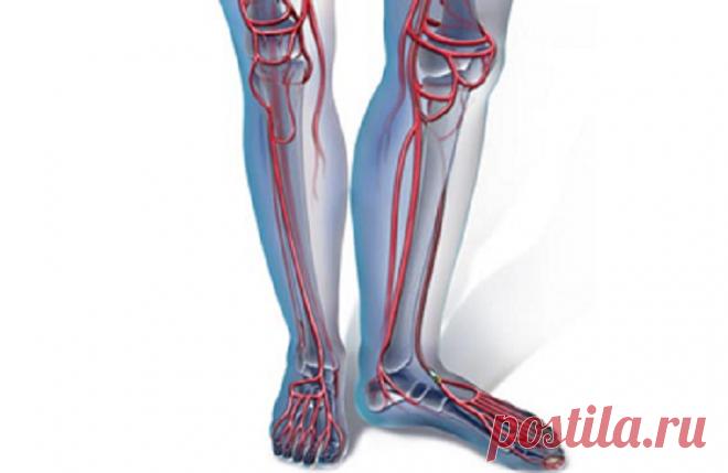 3 способа улучшения кровообращения ног при помощи разных физических упражнений.   health and beauty   Яндекс Дзен