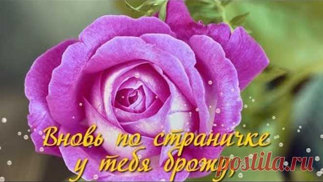 ТЫ КОРОЛЕВА! Красивые стихи, розы и музыка для Вас!