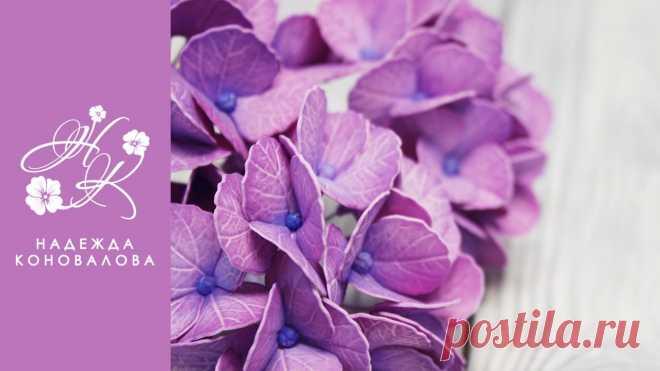 Гортензия из фоамирана мастер-класс Привет! Несколько месяцев назад мы уже делали гортензию из фоамирана, сегодня я покажу еще один способ создания цветов гортензии из фоамирана. Надеюсь, он ва...
