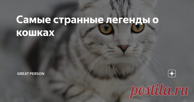 Самые странные легенды о кошках